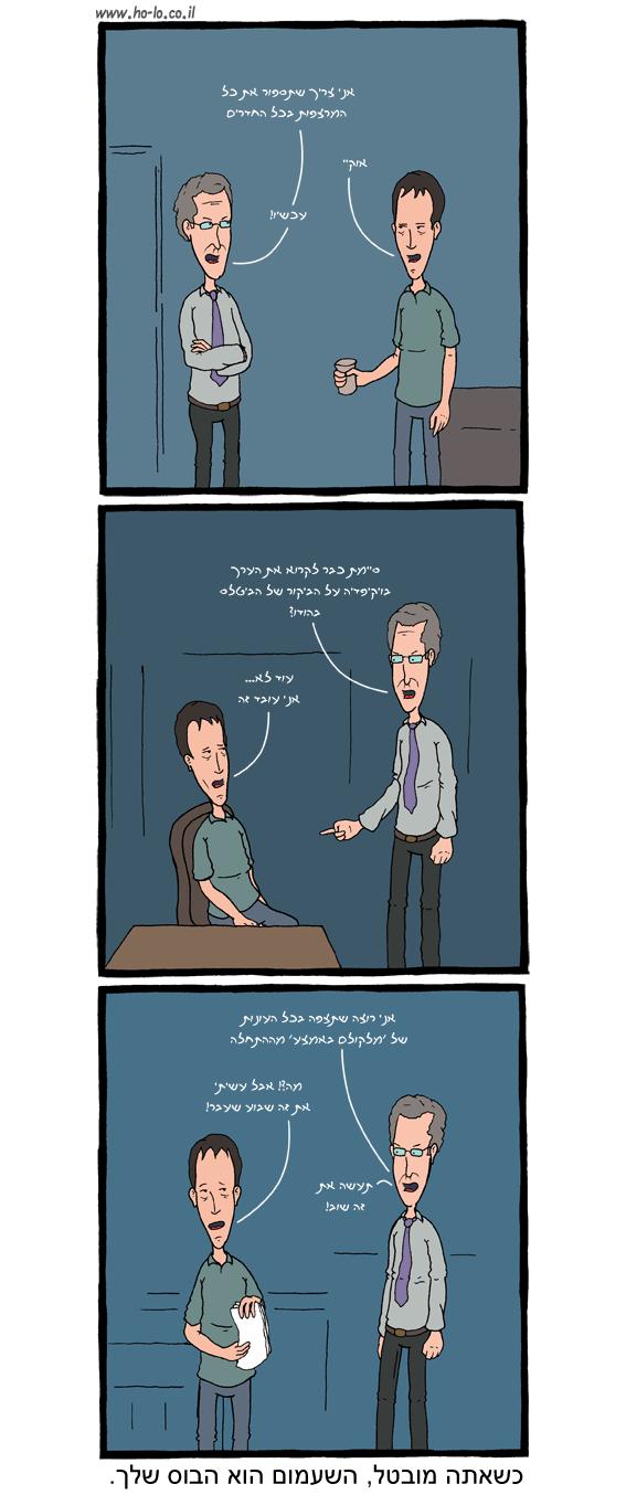 מעביד